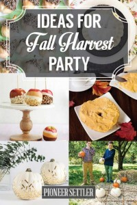 fall-harvest-party