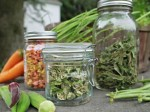 A To Z Guide For Dehydrating Vegetables