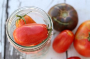40 Ways To Preserve Tomatoes