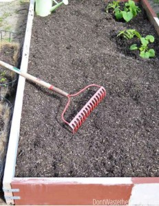 How To Winterize Your Vegetable Garden