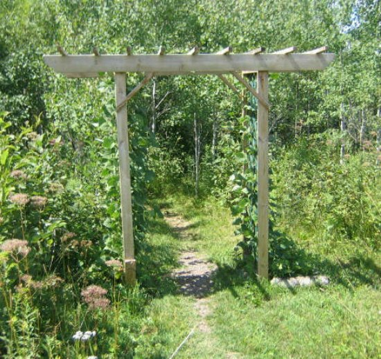 arbor-trellis-diy-backyard-arbor