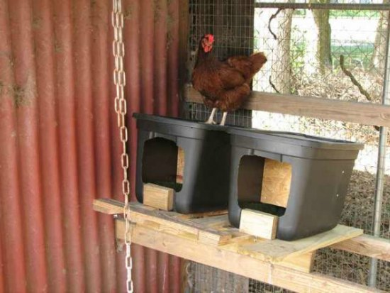 build-roll-away-next-box-inexpensive-nesting-boxes