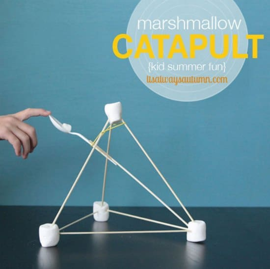catapult-science-experiments-to-entertain-your-kids