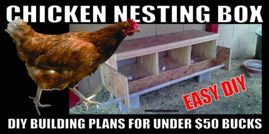chicken-nesting-box-diy-plans-chicken-coop-upgrades