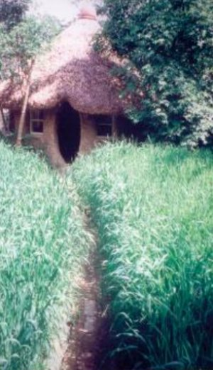 cob-garden-retreat-backyard-cob-projects