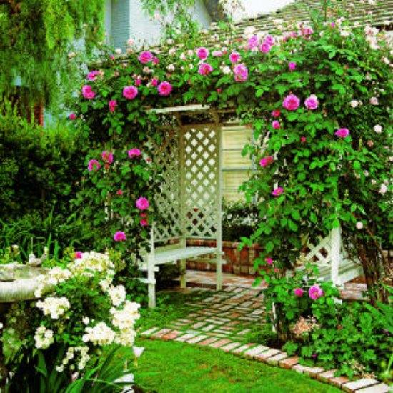 easy-arbor-diy-backyard-arbor