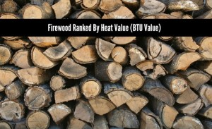 Firewood Ranked By Heat Value (BTU Value)