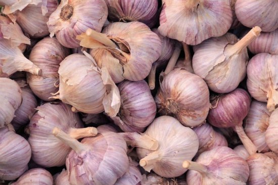 freeze-garlic