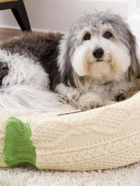 homemade-dog-bed-ways-to-repurpose-old-sweaters