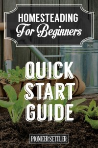 Homesteading Quick Start Guide For Beginners