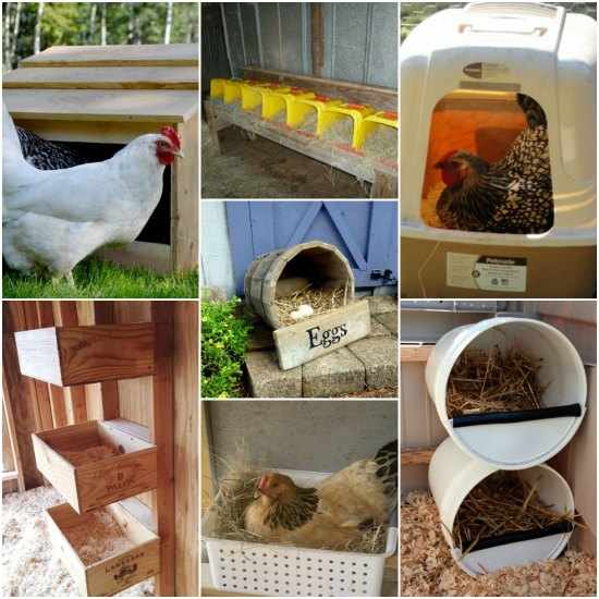 22 chicken approved inexpensive nesting boxes Make your own hen house