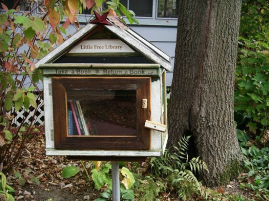 little-free-library-house