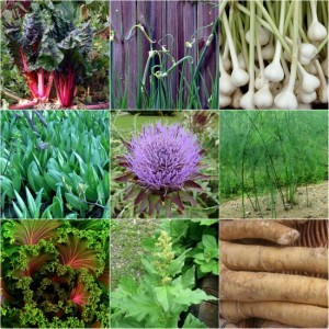 7 Perennial Vegetables To Plant In Your Garden