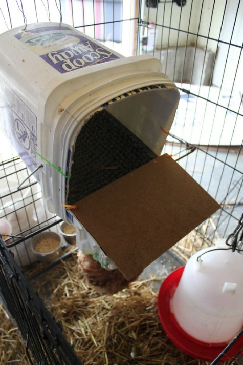 roll-away-next-box-inexpensive-nesting-boxes