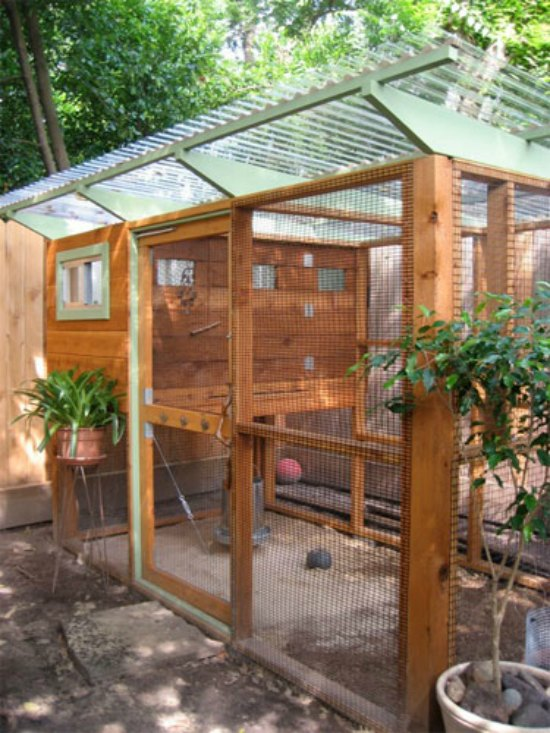 21 Best Chicken Coop Upgrades