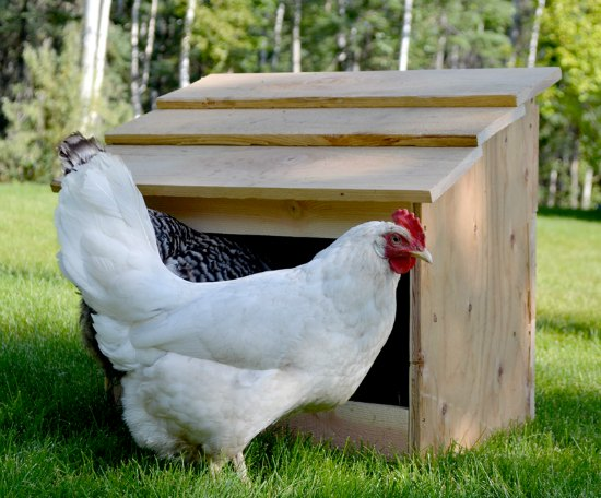 single-nesting-box-inexpensive-nesting-boxes