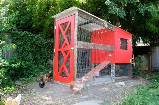 10-awesome-diy-chicken-coop-plans-for-homesteaders