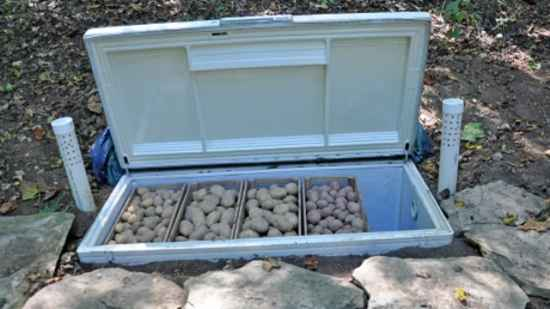 10-diy-root-cellars-for-the-homestead
