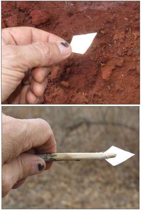 11-diy-bow-and-arrow-projects-for-survival