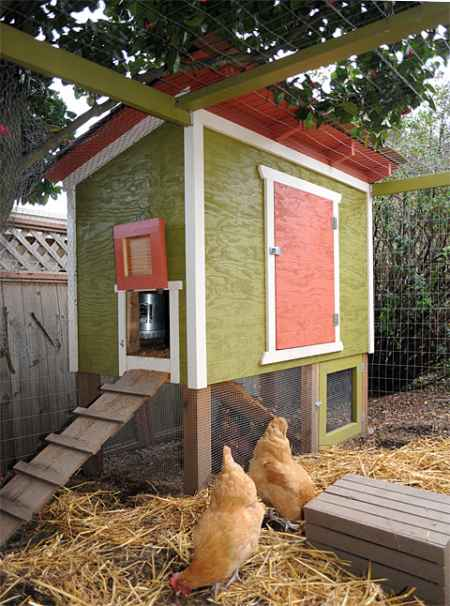 12-awesome-diy-chicken-coop-plans-for-homesteaders