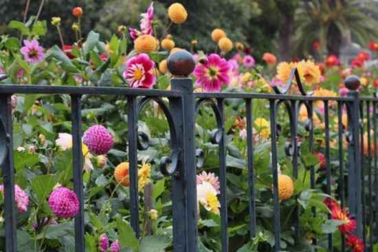 13-easy-diy-fence-solutions