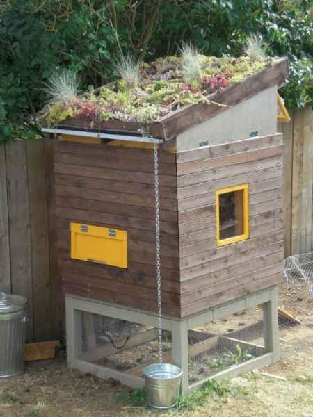 19-awesome-diy-chicken-coop-plans-for-homesteaders