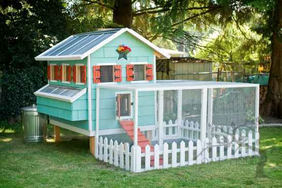 2-awesome-diy-chicken-coop-plans-for-homesteaders