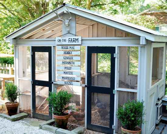 3-awesome-diy-chicken-coop-plans-for-homesteaders