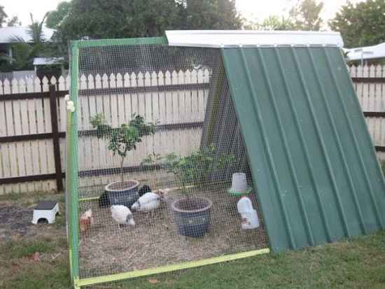 6-awesome-diy-chicken-coop-plans-for-homesteaders