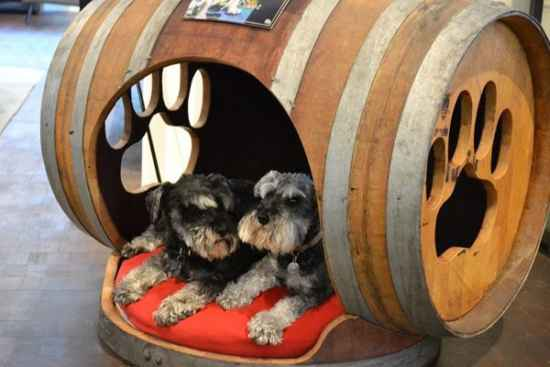 6-brilliant-ways-to-repurpose-wine-barrels-on-the-homestead