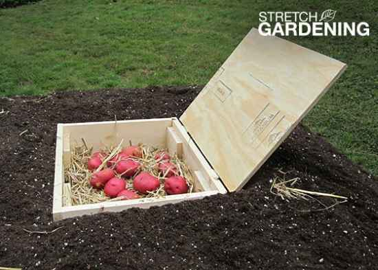 7-diy-root-cellars-for-the-homestead