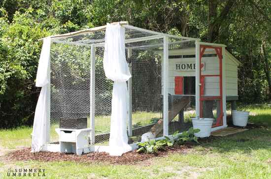 8-awesome-diy-chicken-coop-plans-for-homesteaders