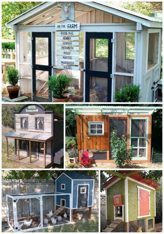 awesome-diy-chicken-coop-plans-for-homesteaders