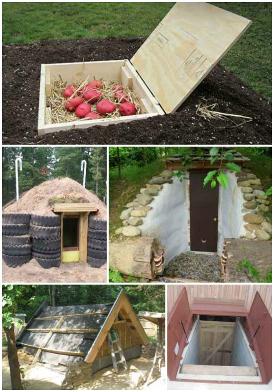 diy-root-cellars