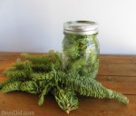 Recipe: Evergreen Scented Vinegar For Cleaning