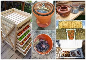 root-cellar-alternatives