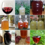 16 Best Fruit, Herb, And Vegetable Wine Recipes