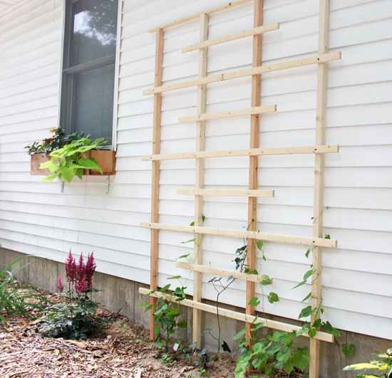 1-diy-garden-trellis-projects