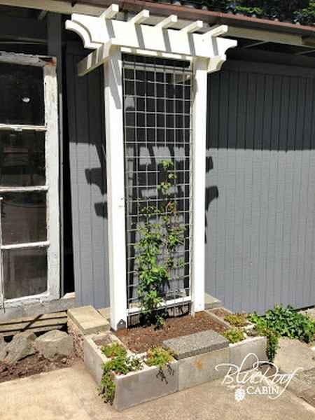 12-diy-garden-trellis-projects