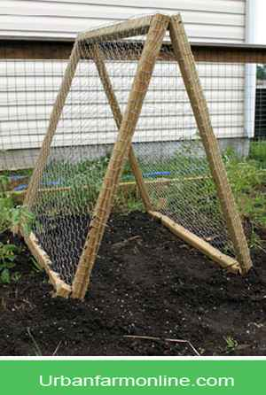 15 Diy Garden Trellis Projects