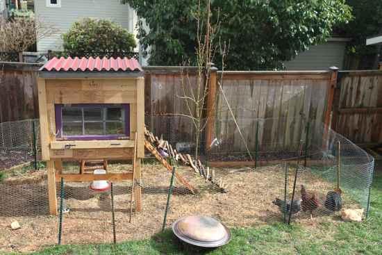 16-best-tutorials-for-homesteading-skills