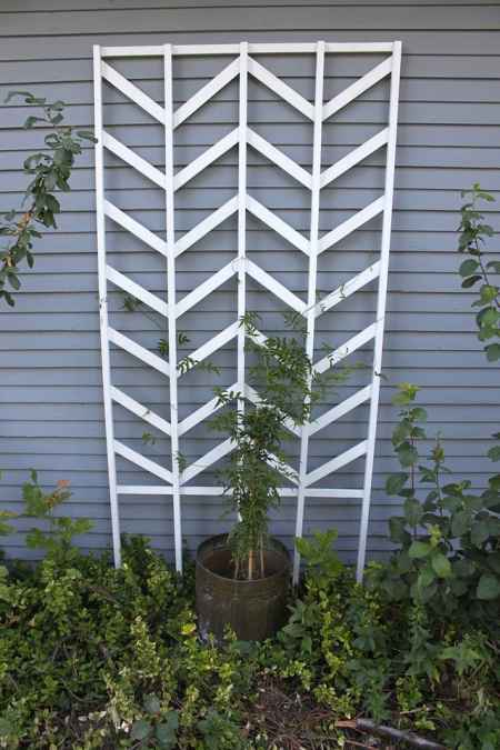18-diy-garden-trellis-projects