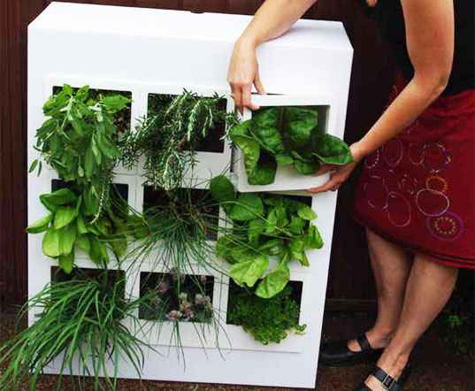2-best-ways-to-grow-food-indoors