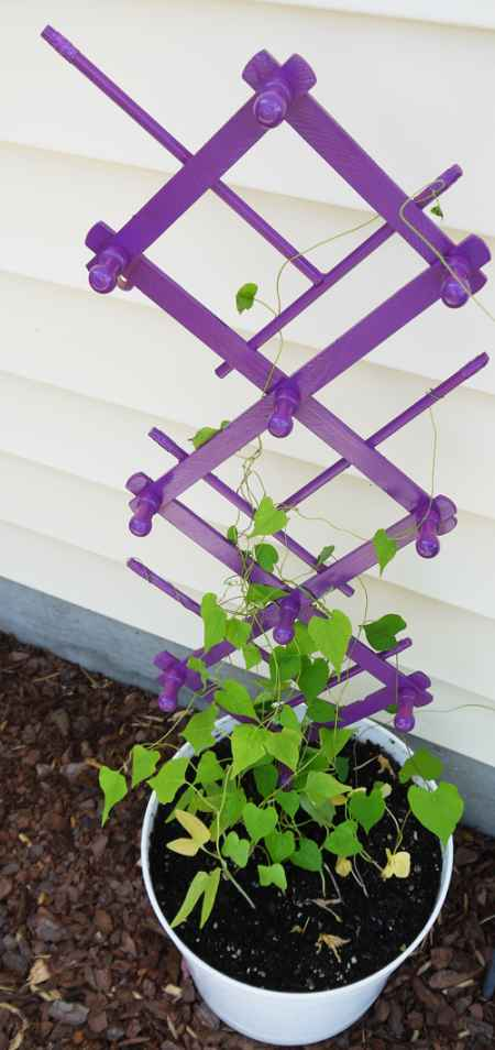 2-diy-garden-trellis-projects