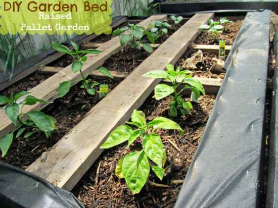 2-pallet-garden-planter-ideas