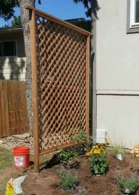 18 DIY Garden Trellis Projects