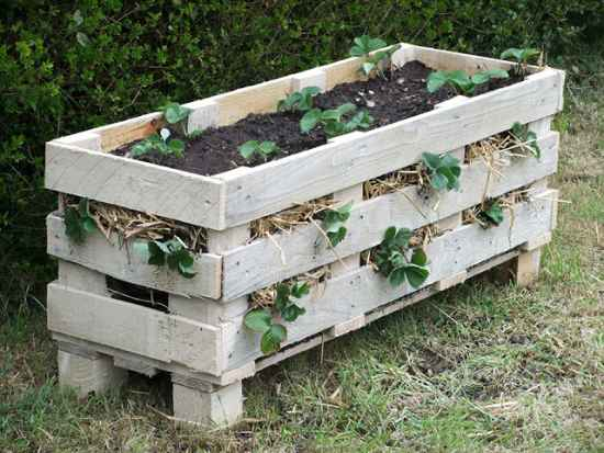 3-pallet-garden-planter-ideas