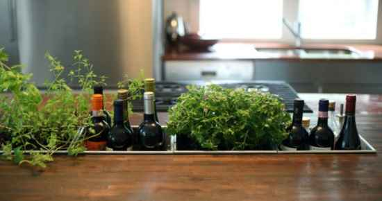 5-best-ways-to-grow-food-indoors