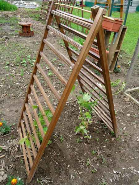 6-diy-garden-trellis-projects