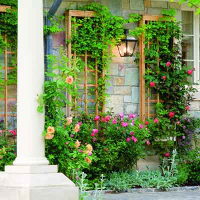 7-diy-garden-trellis-projects